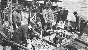 herringfleet